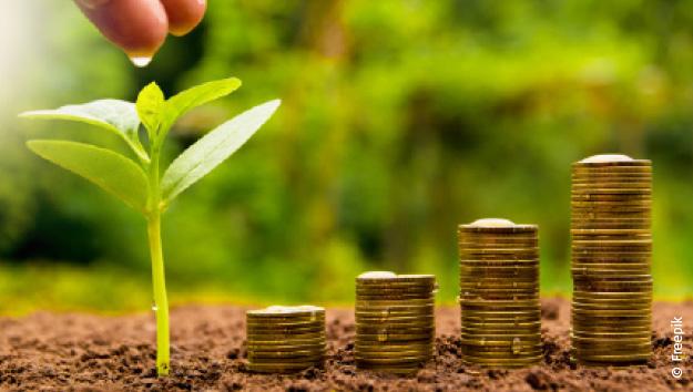 Découvrez les enjeux de la finance solidaire